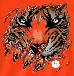 Clemson Tigers Football T-Shirts - Ripped - Tiger Claws