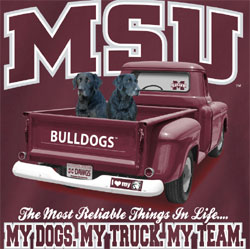 Mississippi State Bulldogs Football T-Shirts - My Dogs My Truck My Team